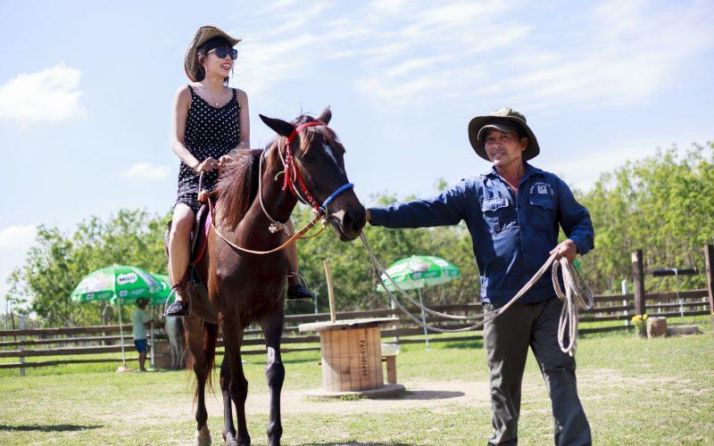 cưỡi ngựa vườn xoài